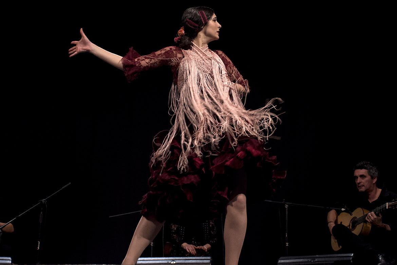 flamenco blog bologna corsi
