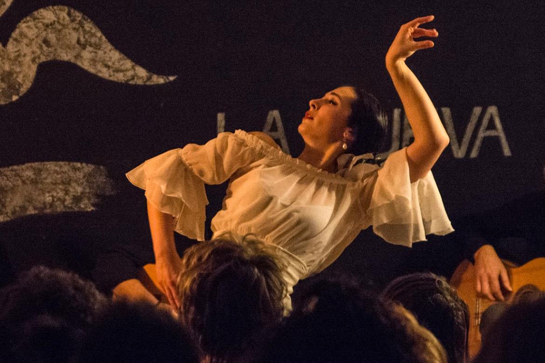 flamenco bologna corsi