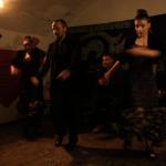Claudio Javarone,Irene Gneri,Sara Tacchi, tablaos 2018-2019, gallery, flamenco, los viernes en la Cueva